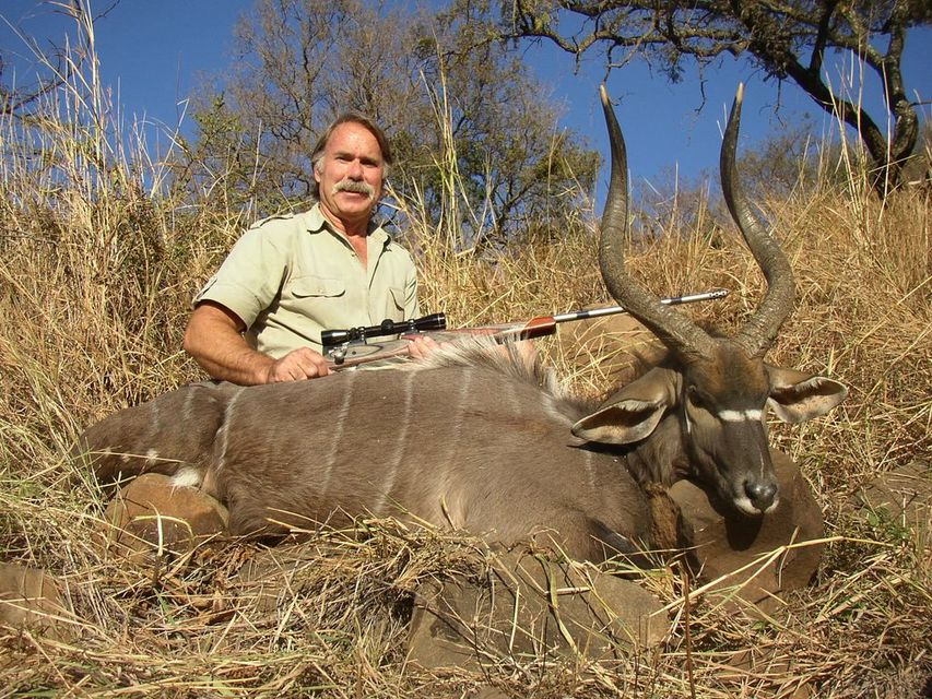 Click to view full size image  ==============  Nyala