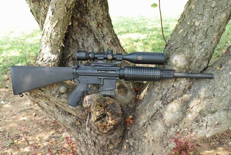 Click to view full size image  ==============  DPMS Lo-Pro