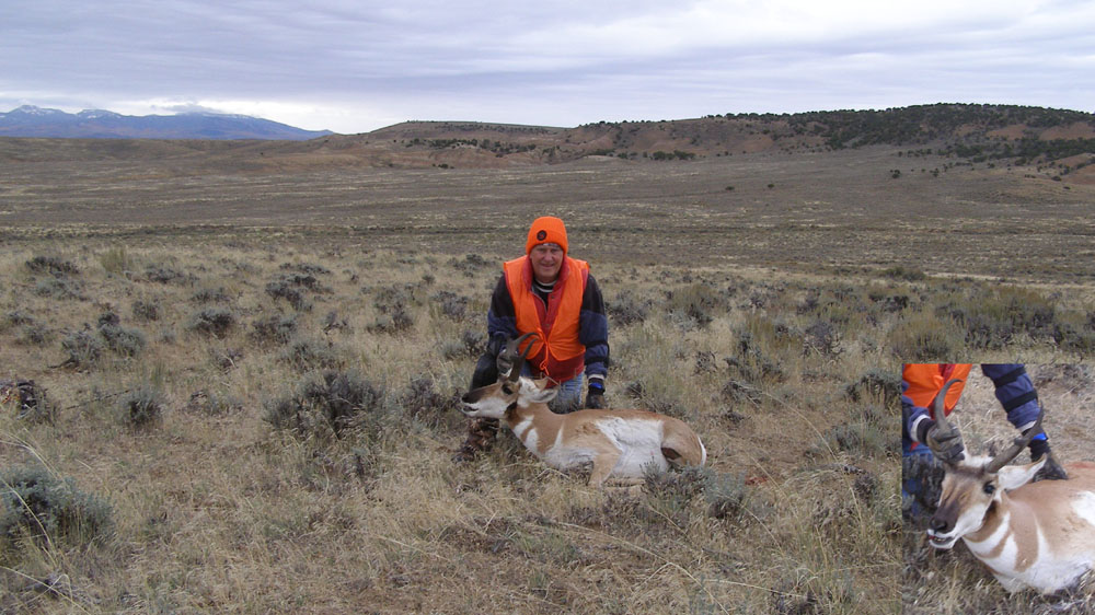 wide angle pronghorn picture 1000.jpg